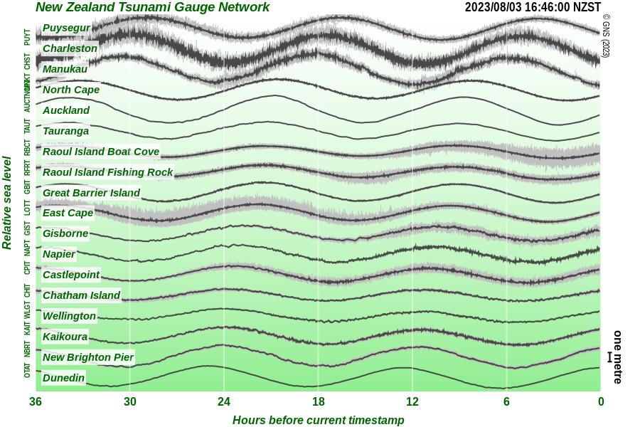 Sea Level Tsunami Gauge Chart